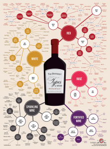 Different-Types-of-Wine-Infographic-Chart3