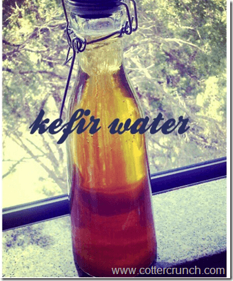 kefir water- fermented foods