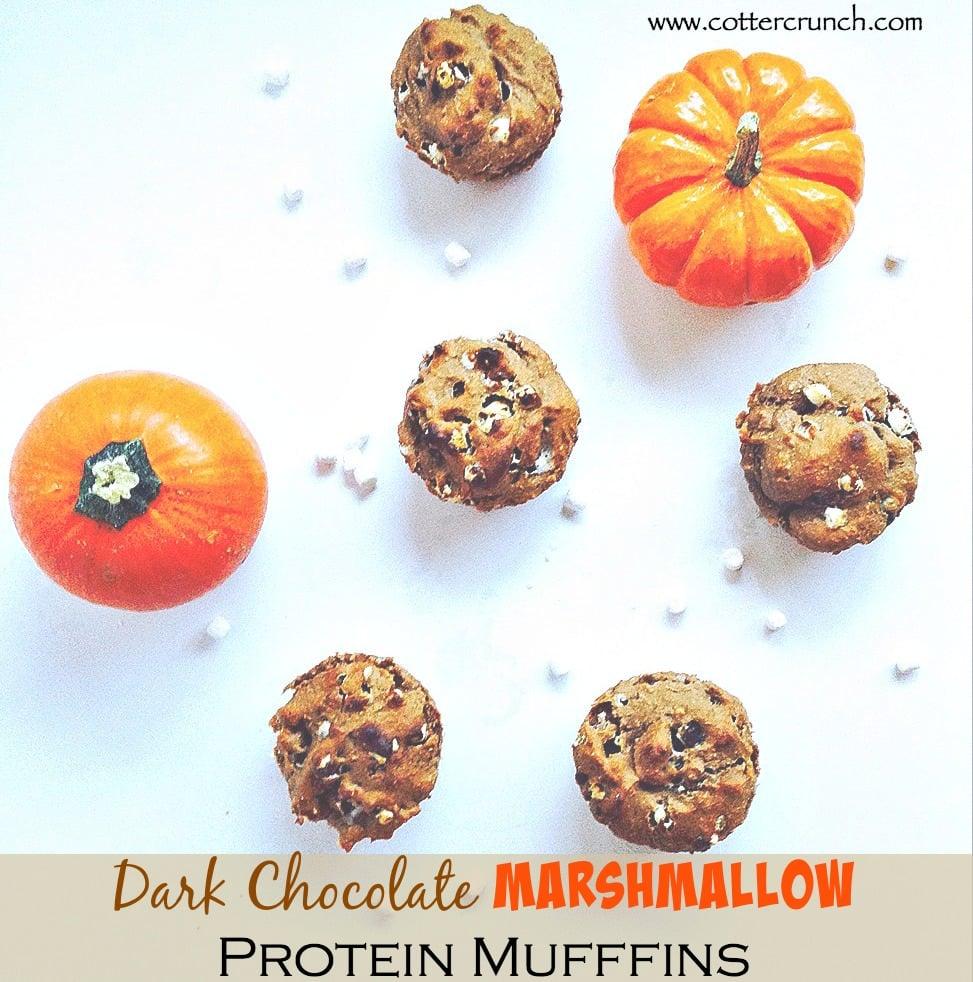 dark chocolate protein marshmallow muffins (GF)