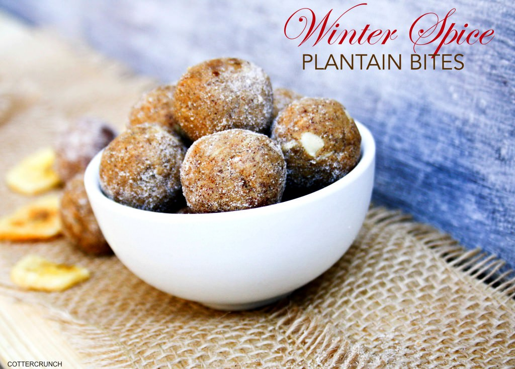 WINTER SPICE plantain Healthy Bites 4 (4 of 1)