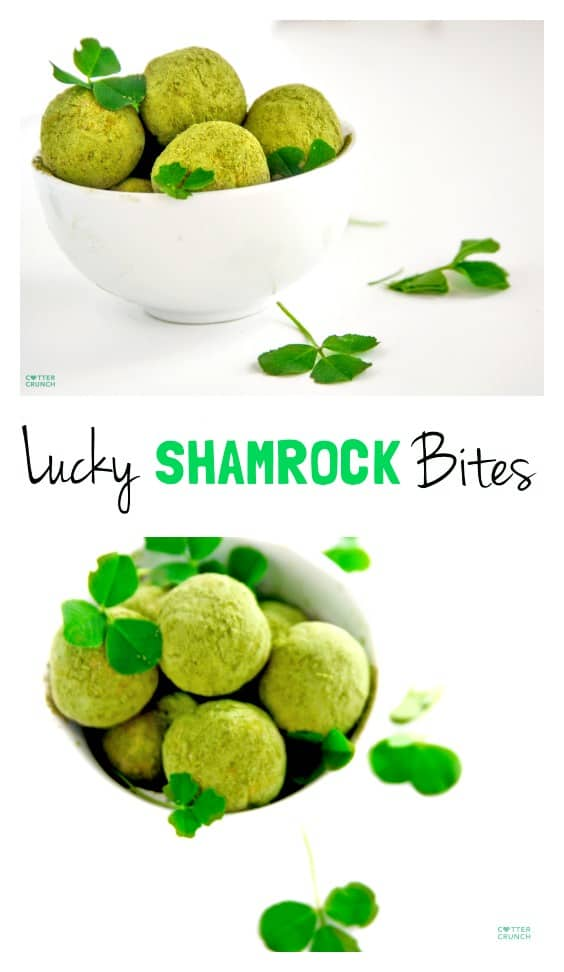 Grain free Lucky Shamrock Protein Bites with Matcha! Snack healthy this St. Patrick's day with these gluten free Lucky Shamrock Protein Bites (aka Healthy Bites). They are packed with antioxidants, good fats, and protein. Not to mention tasty! www.cottercrunch.com
