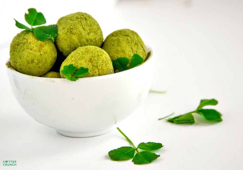 Snack healthy this St. Patrick's day with these gluten free Lucky Shamrock Protein Bites (aka Healthy Bites). They are packed with antioxidants, good fats, and protein. Not to mention tasty! www.cottercrunch.com