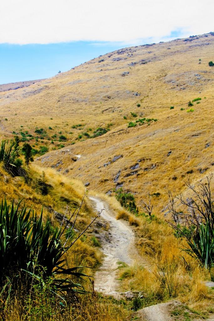 port hills trails, NZ
