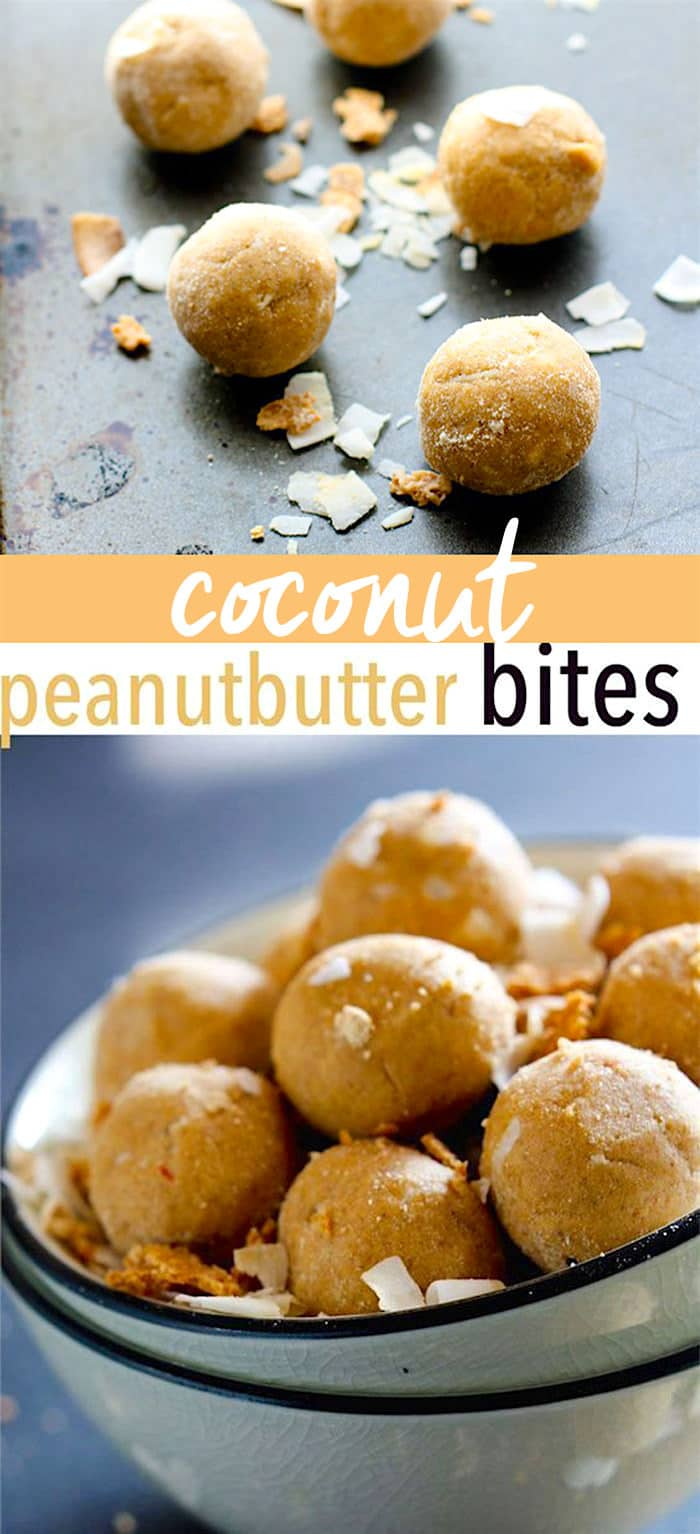 Grain Free Coconut Peanut Butter Protein Bites! A rich flavor but packed with protein! These NO BAKE vegan protein bites are lower in sugar and carbs. Great for summer treats!