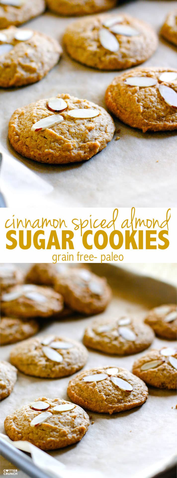 Grain Free and Paleo friendly cinnamon spiced almond-sugar-cookies! Made with healthy fats, coconut sugar, cinnamon, almonds, and taste like the real deal! Perfect FALL baking made healthy! #cottercrunch