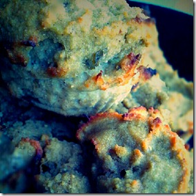 cocnut fig muffins (grain free)