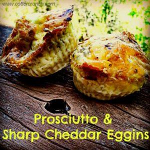 eggins and procuito
