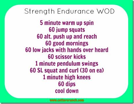 Strength Endurance WOD