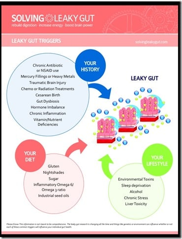 solving leaky gut