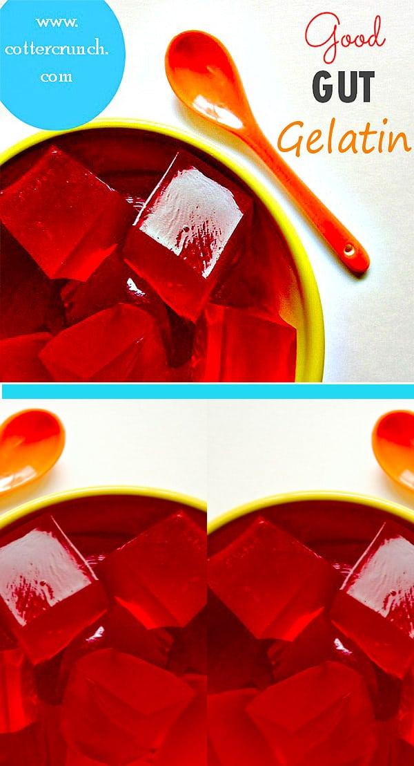 "good gut gelatin ""jello"" made with with kombucha"