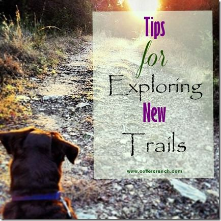 tips for exploring new trails