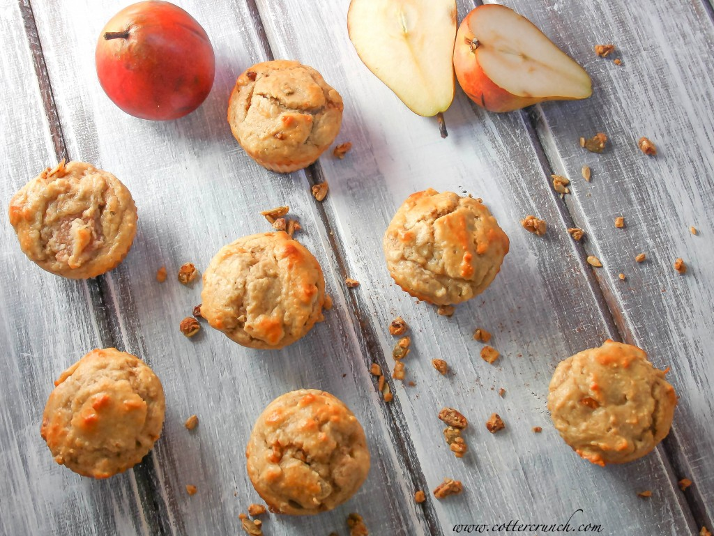 Light and tasty Paleo Ginger Spice Pear Muffins. Delicious and easy to make paleo muffins! Naturally sweetened and of course grain free