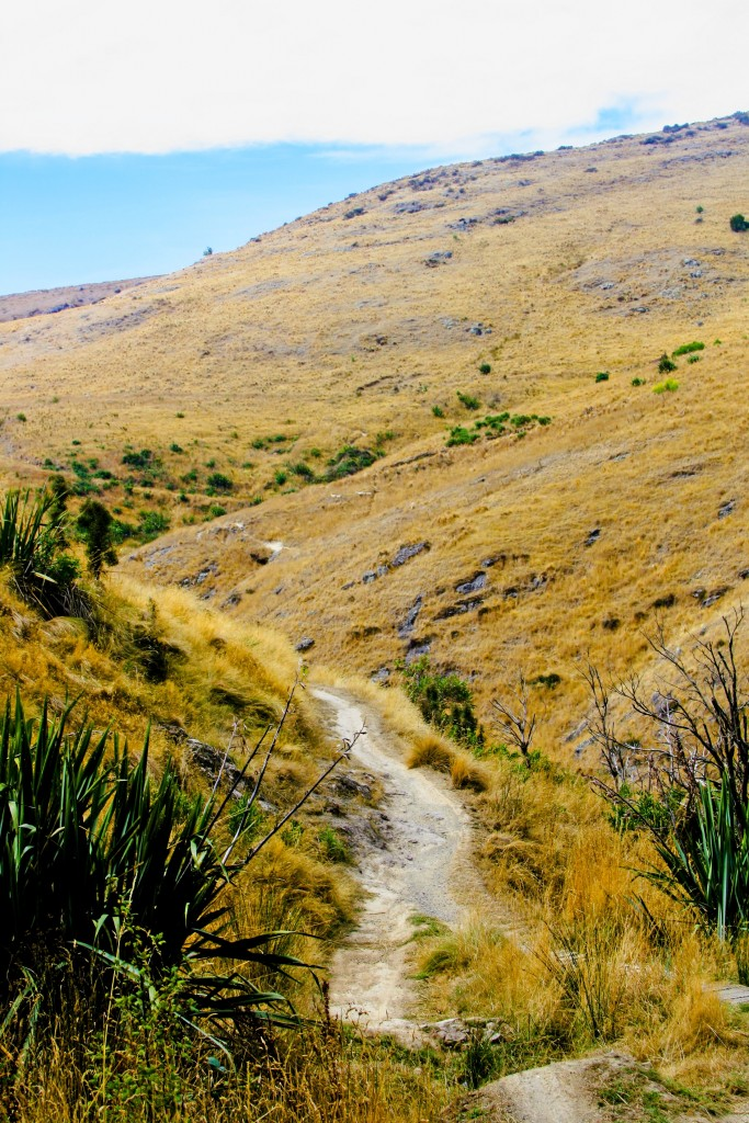 port hills trails, NZ