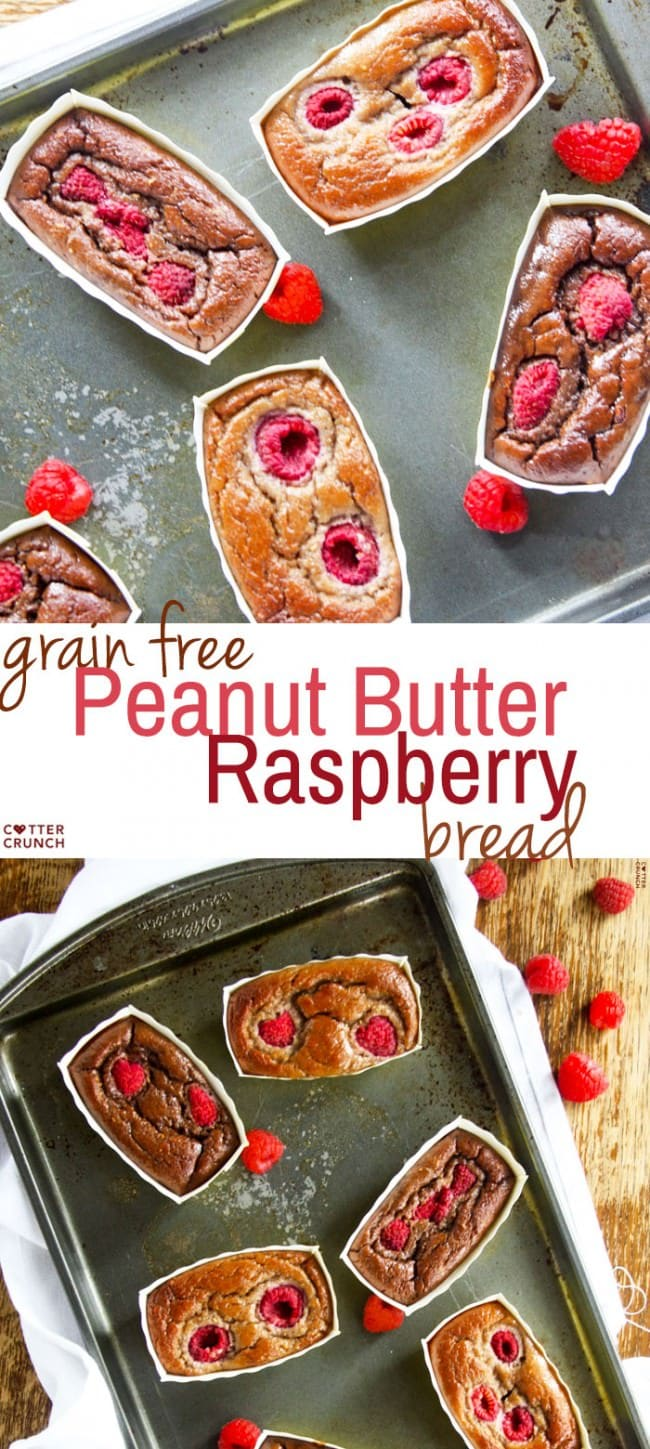 Peanut Butter Raspberry Bread (chocolate and vanilla). This grain free bread is naturally gluten free, low in sugar, dairy free, and is SUPER SIMPLE to make! Great for any holiday, celebration, or just clean eating!