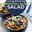 Creamy Blueberry Broccoli Slaw Salad
