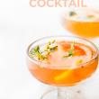 cocktail glasses pin paloma