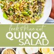 quinoa salad pin and ingredients