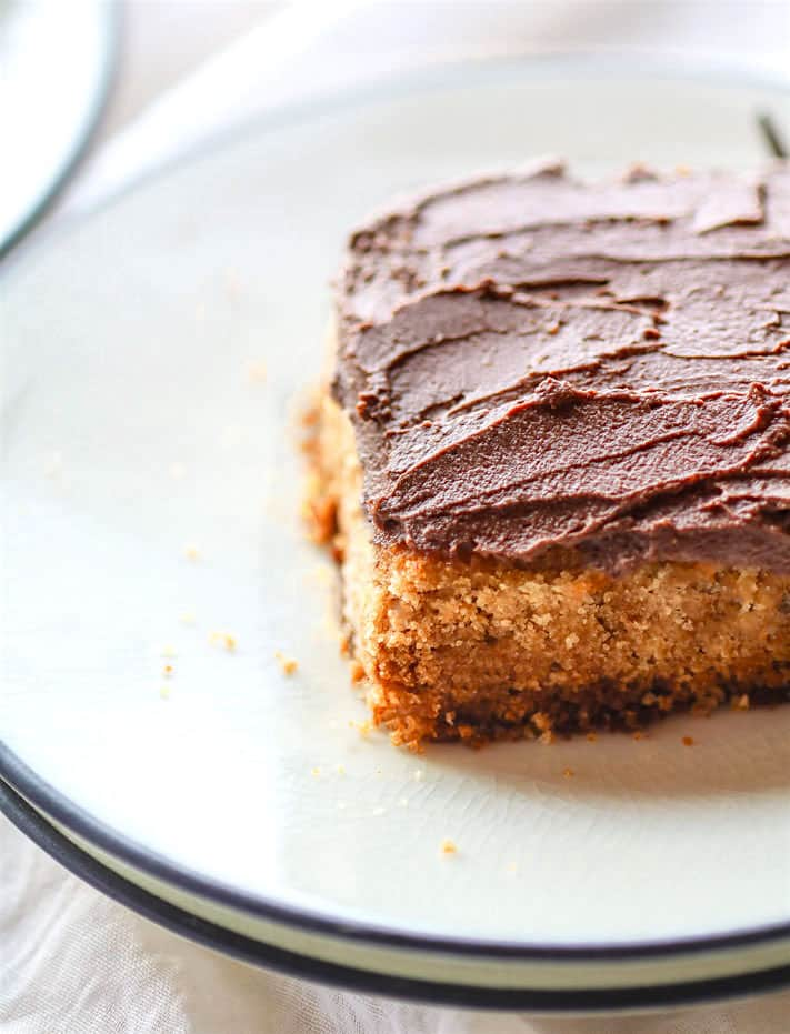 Vegan White Cake with Chocolate Coconut Frosting {Gluten Free}