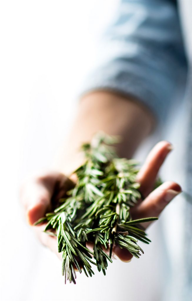 someone with a hand full of fresh rosemary