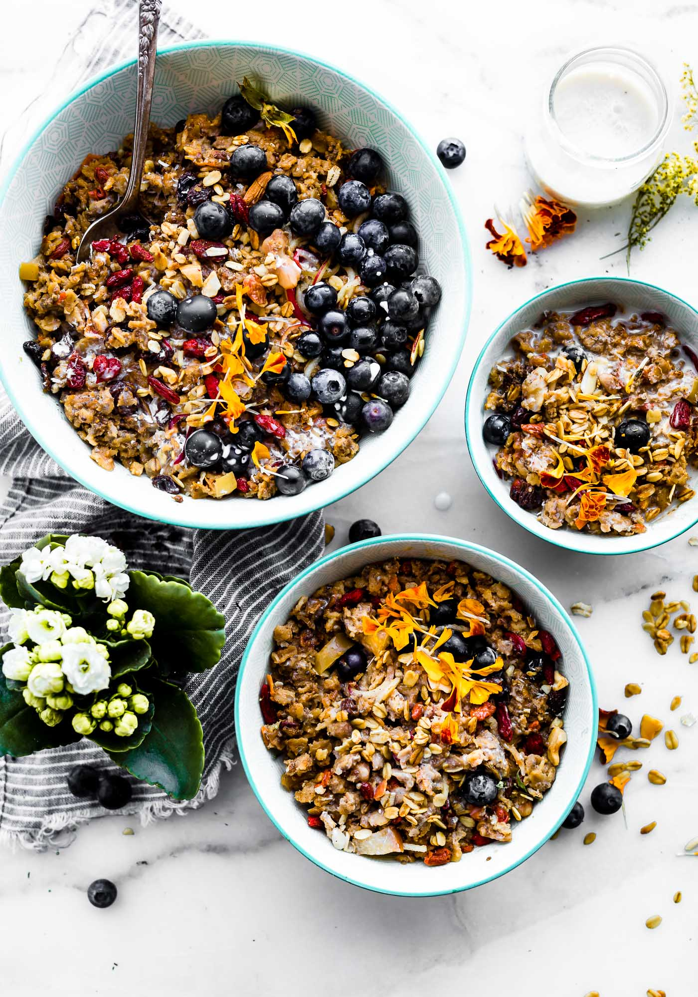 Superfood Instant Pot Oatmeal! A healthy breakfast meal prep recipe or breakfast in a jar! This InstaPot oatmeal is filled with superfoods such as gluten free rolled oats, apples, walnuts, flaxseed, goji berries, and more. A wholesome breakfast that can be made in a multi-cooker or stove top. Vegan friendly.