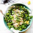 A bowl of lightened up no mayo Chicken Salad