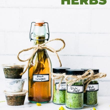 Preserving Herbs 3 Ways and Fresh Herb Recipes