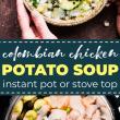potato chicken soup - instant pot. pin