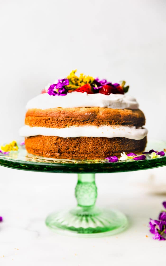 Birthday Cake For Dogs Grain Free Recipe Cotter Crunch