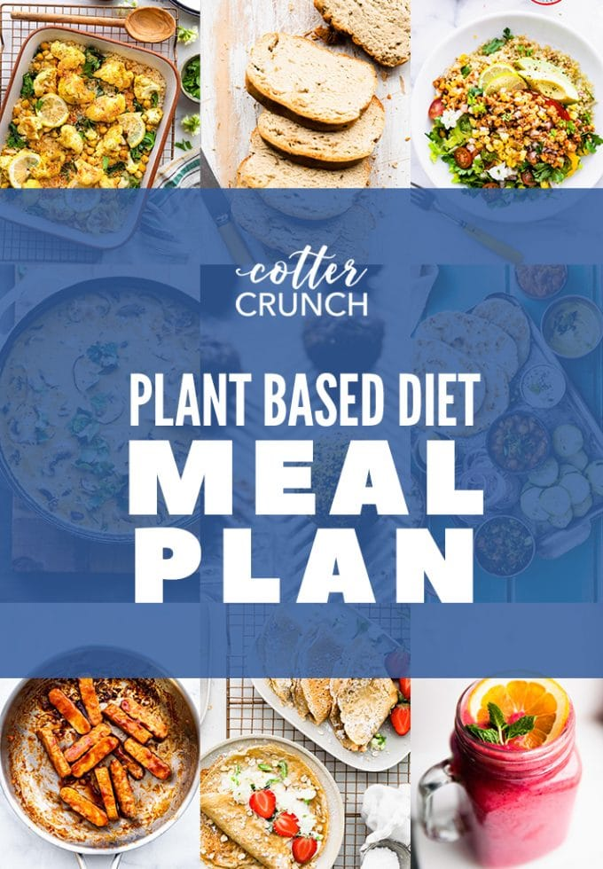 plant based diet meal plan has healthy vegan recipes; many made using simple pantry foods! Make these recipes to replace dairy, eggs, and gluten.
