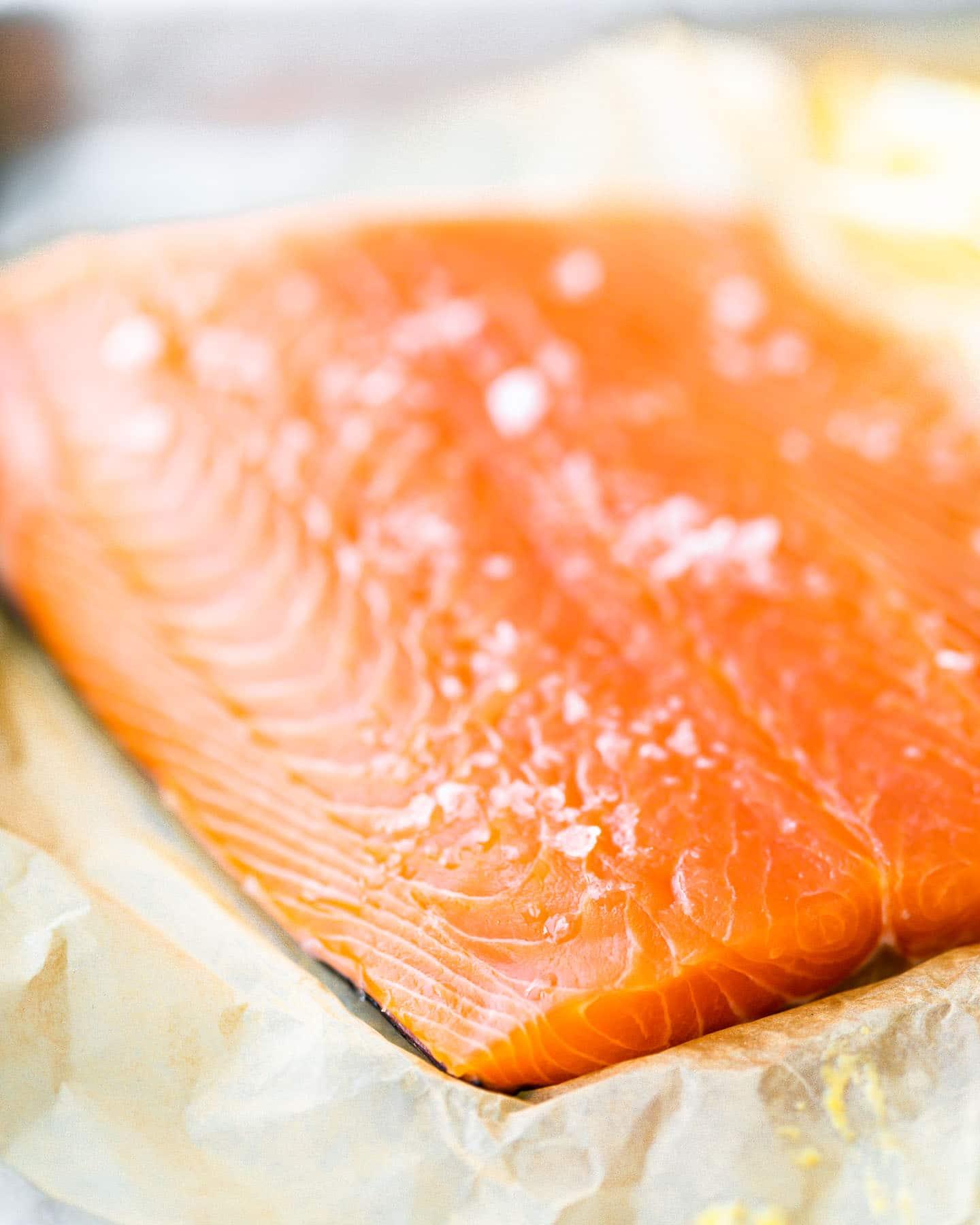 closeup: raw salmon fillet