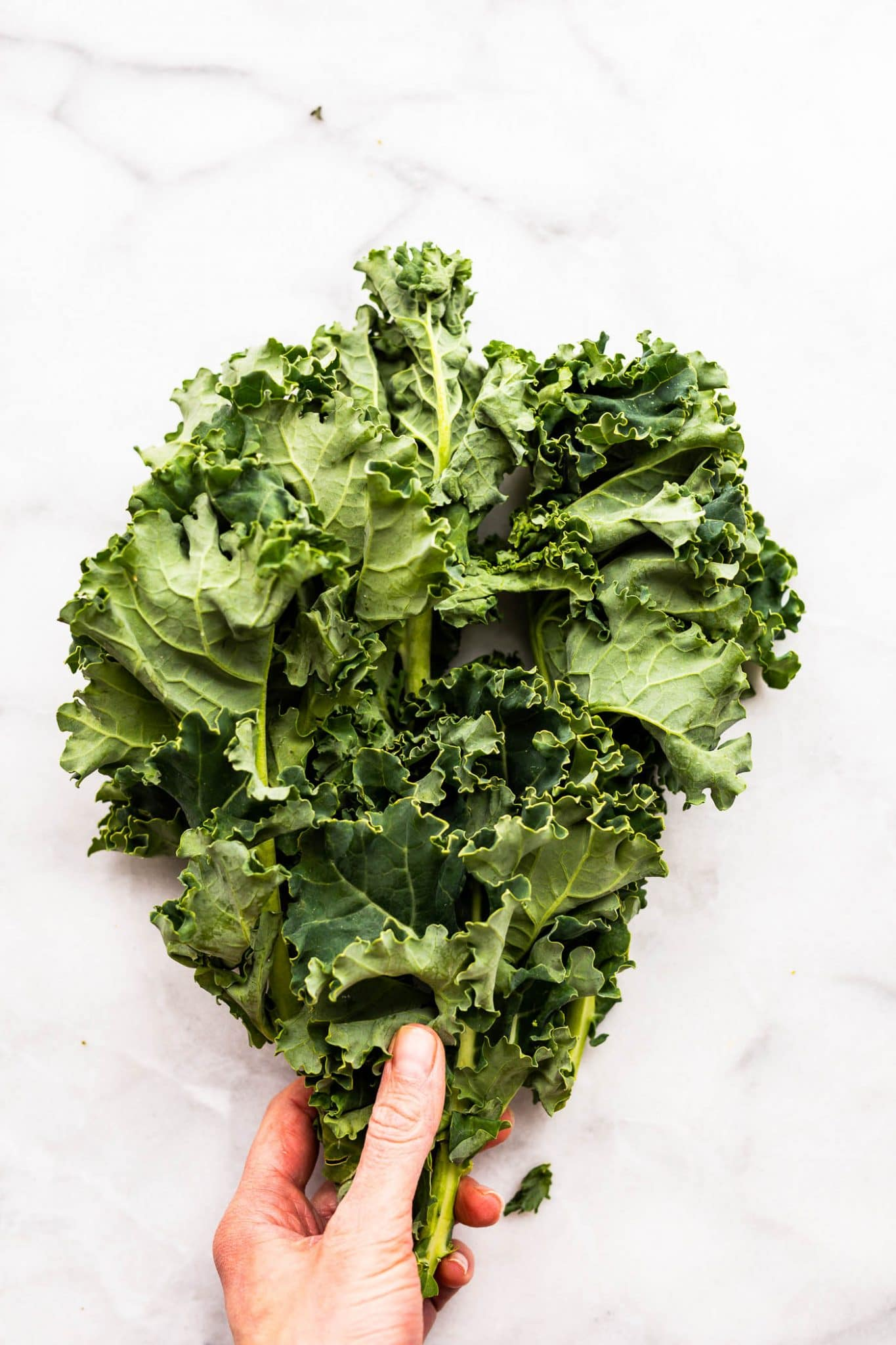 overhead photo of woman's hand holding bunch of kale
