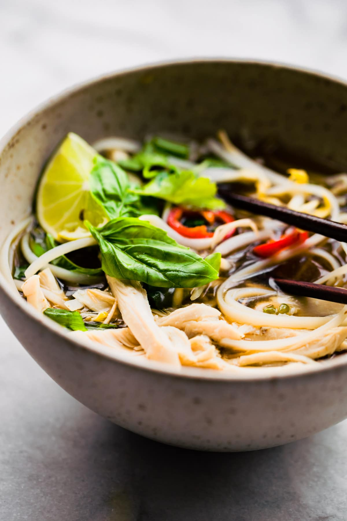 dish of gluten free pho with chicken rice noodles