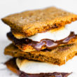 Side view of two oven baked smores on top of each other.