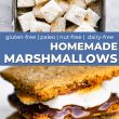Pinterest image of marshmallows and smores