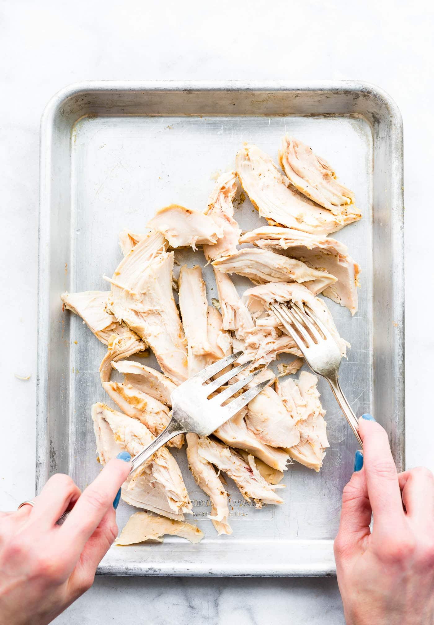 Overhead image shredding chicken breast on a sheet pan.